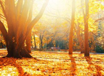 Buďte fit aj na jeseň