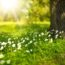 Ako užitočný môže byť obyčajný výlet do prírody